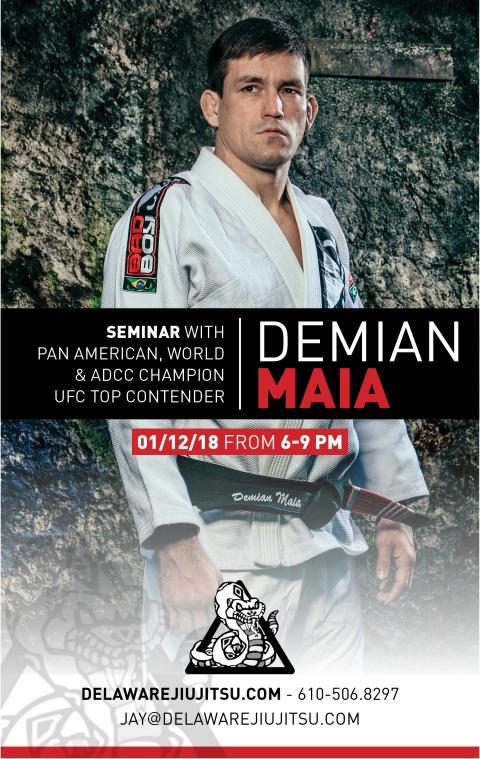 Seminar with Demian Maia